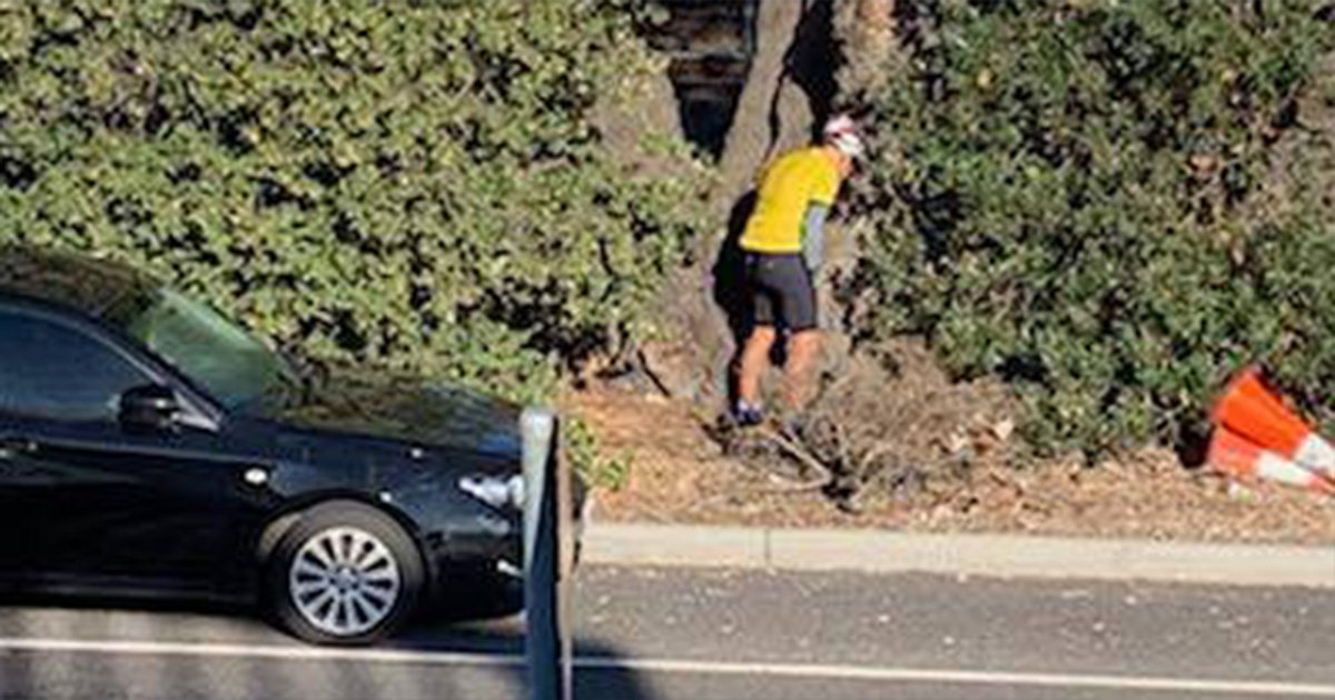 Family's anger at cyclists who stop to pee on tree outside their house every weekend