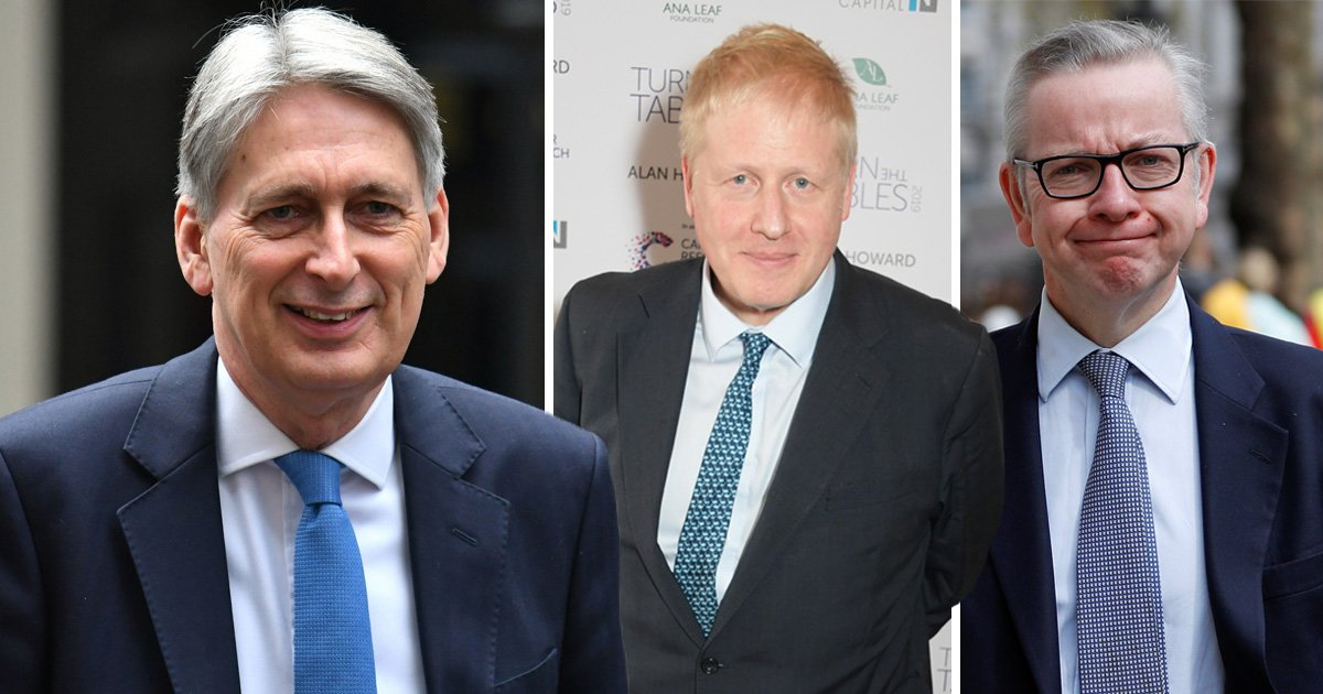 Hammond mocks Gove and Johnson's 'suicide pacts' during failed bids to beat May