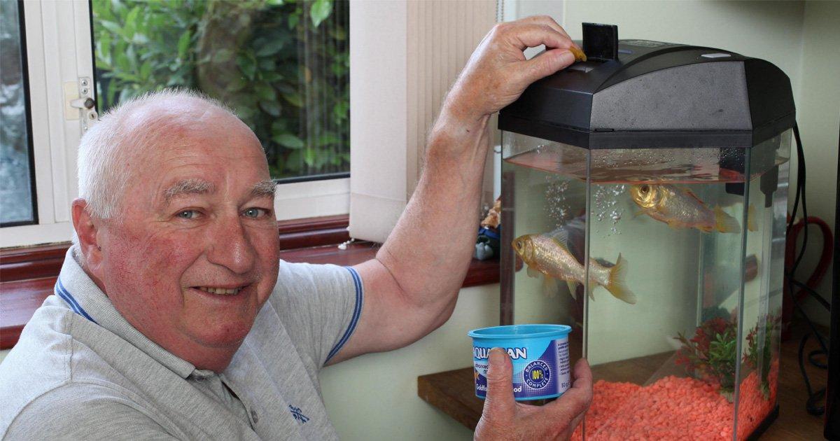 George, Britain's oldest goldfish, dies aged 44