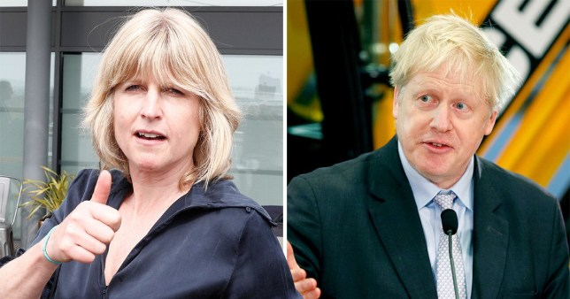 Rachel Johnson is a candidate for the new pro-EU political party Change UK  (Pictures: Getty/Reuters)