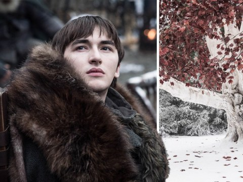 Game Of Thrones season 8, episode 3: Bran could have a trick up his sleeve and it involves blood magic