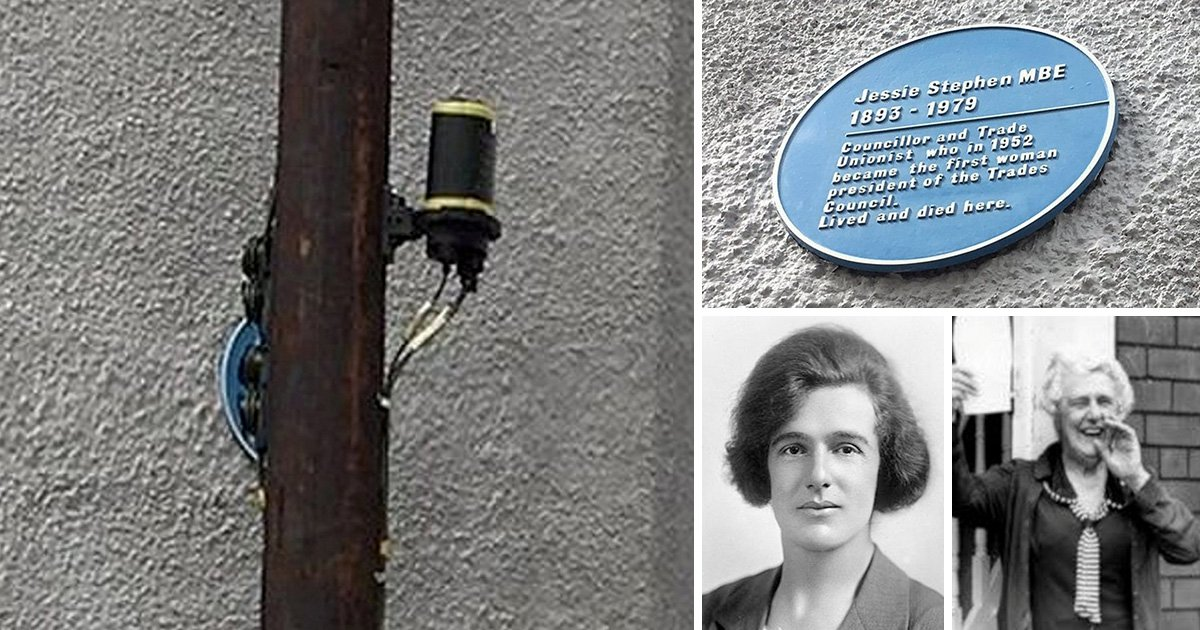 BT forced to remove phone pole blocking suffragette's blue plaque