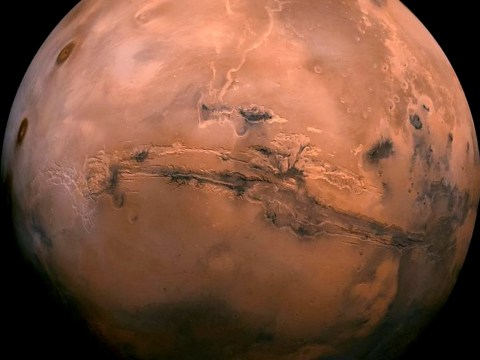 There's a 'real chance' that alien lifeforms thrived on Mars, scientists say
