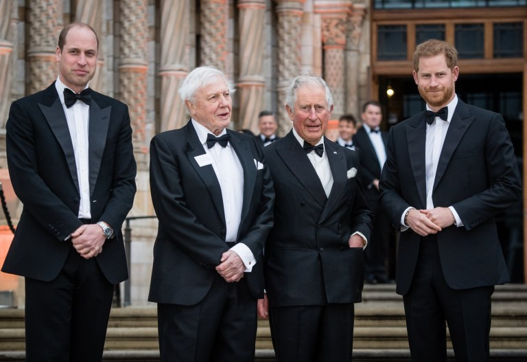 "LONDON, ENGLAND - APRIL 04: Prince William, Duke of Cambridge, Sir David Attenborough, Prince Charles, Prince of Wales and Prince Harry, Duke of Sussex attend the ""Our Planet"" global premiere at Natural History Museum on April 04, 2019 in London, England. (Photo by Samir Hussein/Samir Hussein/WireImage)"