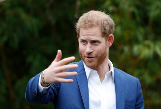 The Duke of Sussex joins schoolchildren as they take part in a tree planting project in support of The Queen's Commonwealth Canopy initiative, together with the Woodland Trust at St Vincent's Catholic Primary School, Acton.