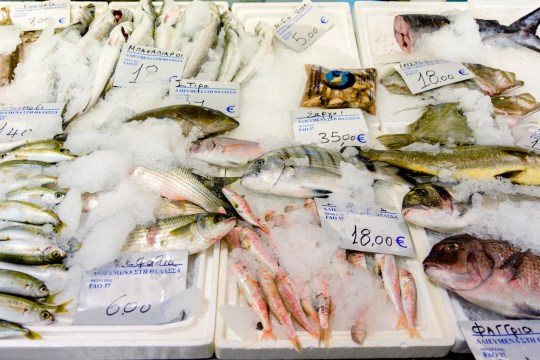 Fish salesman pressured elderly customers to buy stinking bags of