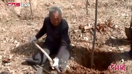 Man who's planted a forest Ma Sanxiao, 70, has created a lush forest from scratch using a spade, a hoe and his iron will. Provider: CNS TV Source: https://videos.metro.co.uk/video/met/2019/04/08/5371769339375564773/640x360_MP4_5371769339375564773.mp4