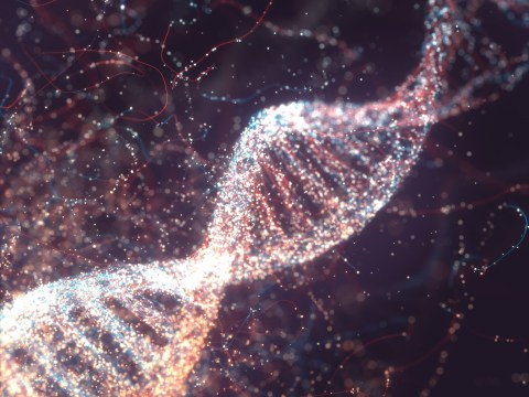 Will all our hard drives and cloud storage end up being held on DNA?