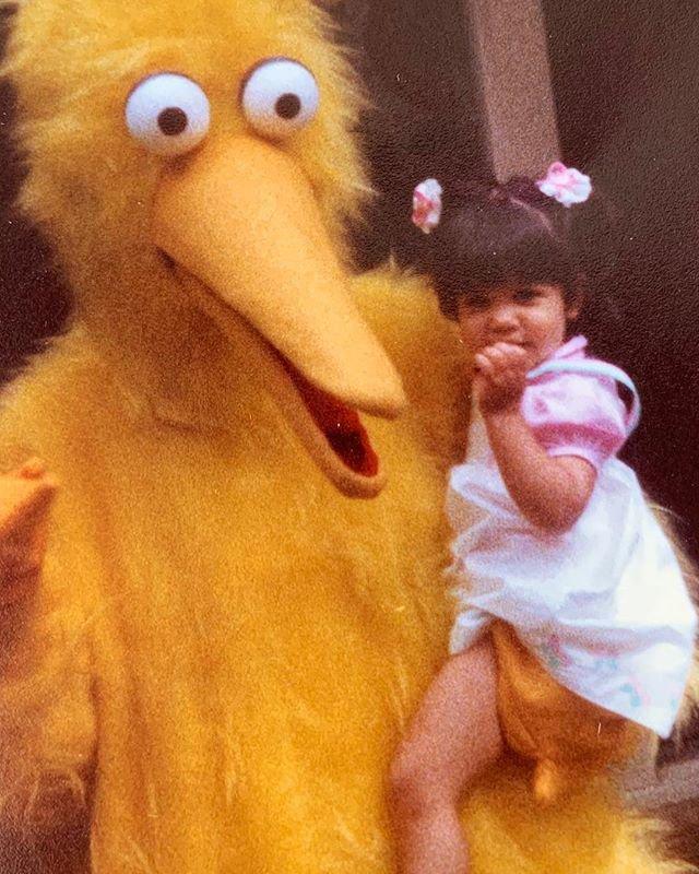 METRO GRAB - Kourtney Kardashian with a terrifying Big Bird Kourtney Kardashian's 2nd birthday picture From @kourtneykardash/Instagram https://www.instagram.com/p/BwX5qeEHfEQ/