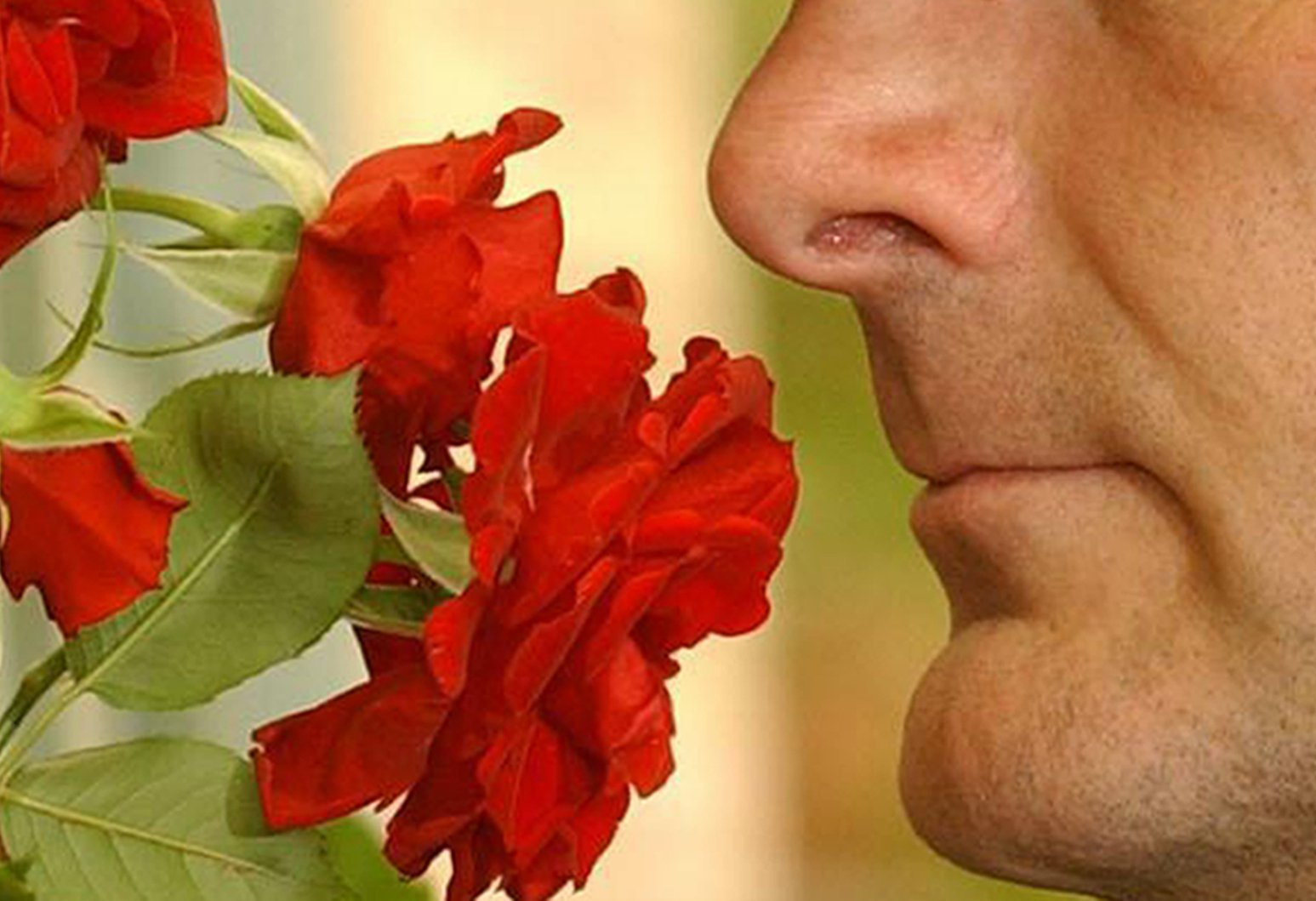 Embargoed to 2200 Monday April 29 Undated file photo of man smelling roses. A poor sense of smell may predict premature death, even among healthy individuals, research suggests. PRESS ASSOCIATION Photo. Issue date: Monday April 29, 2019. Older adults who had trouble recognising or telling apart common odours were almost 50% more likely to die over a 10-year period than individuals with sensitive noses, the study showed. See PA story HEALTH Smell. Photo credit should read: Stefan Rousseau/PA Wire