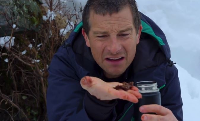 Netflix trolls Bear Grylls over eating poo on interactive show You vs Wild