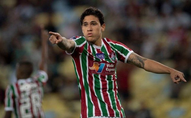 Fluminense striker Pedro is on Manchester United's radar
