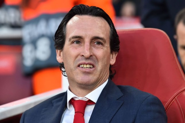 Unai Emery has been urged to offload three Arsenal players (Picture: Getty)