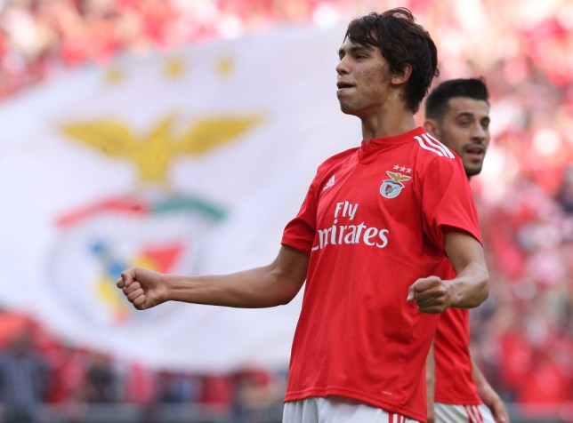 Manchester United target Joao Felix is 'very happy' at Benfica