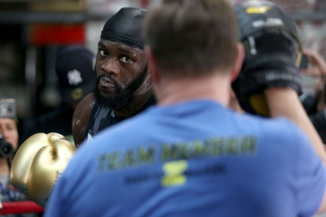 NEW YORK, NEW YORK - MAY 14: Deontay Wilder and Jay Deas during a media work out at Gleason's Gym on May 14, 2019 in New York City. (Photo by Michael Owens/Getty Images)