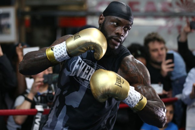Deontay Wilder fights this weekend against Dominic Breazeale
