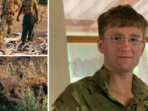 British soldier killed by elephant while on anti-poaching mission in Africa