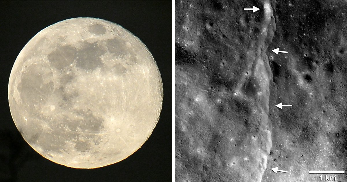 The moon is shrinking because of clashing tectonic plates triggering moonquakes, according to new research.