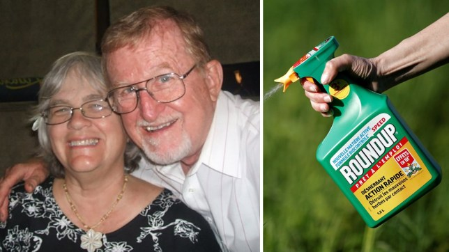 Alva and Alberta Pilliod say the cancer diagnosis 'changed their lives forever'