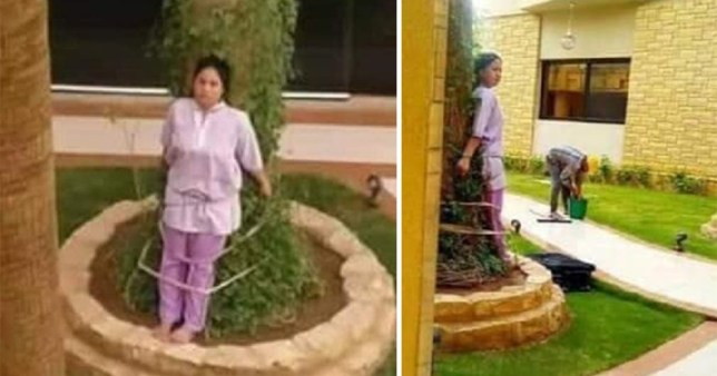 Maid tied to tree for leaving furniture in the sun