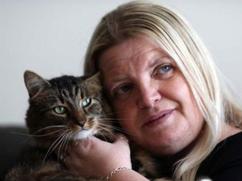 Mum finds Snapchat video of her cat being kicked in the street