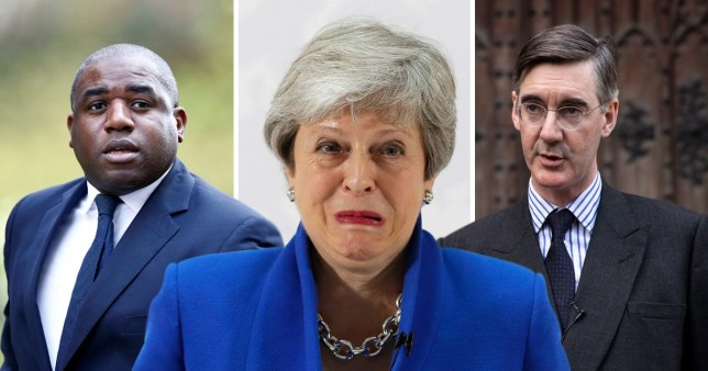 Theresa May's plan has been slammed by MPs from the Conservative and Labour parties