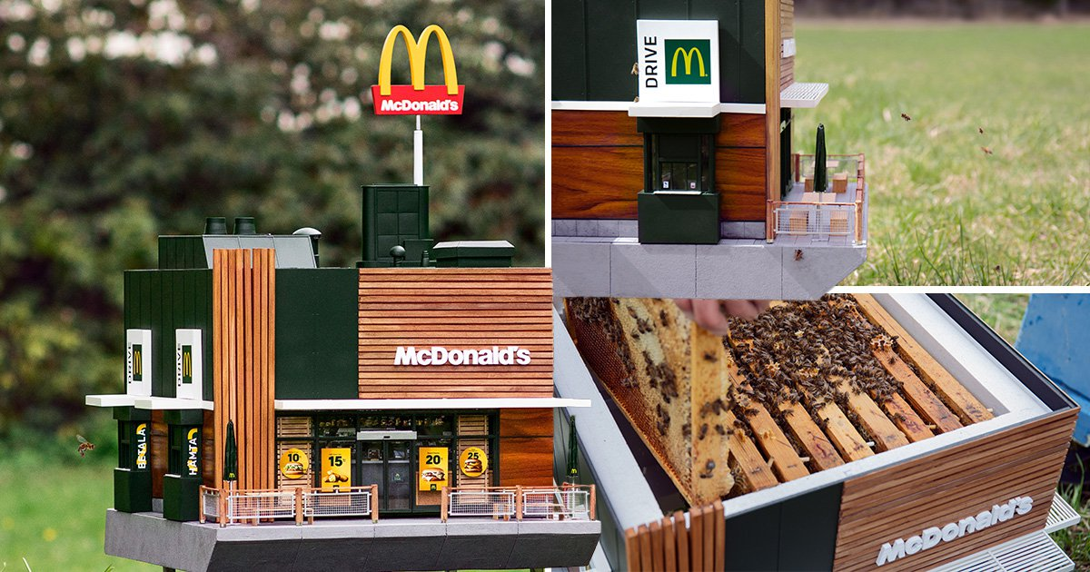 McDonald's has created a tiny replica restaurant for bees
