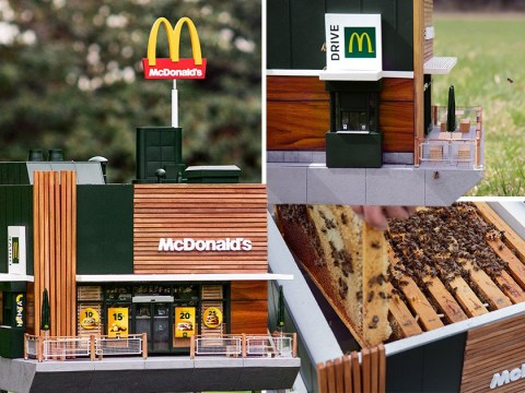 McDonald's has created a tiny replica restaurant for bees