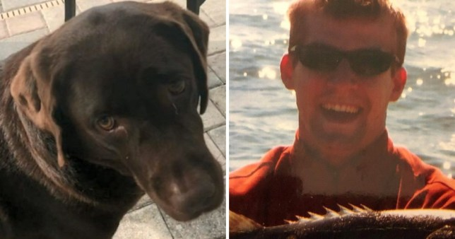 Andrew Epp, 36, reportedly took his own life after the death of his service dog  Java (Picture: WFLA; GoFundMe)