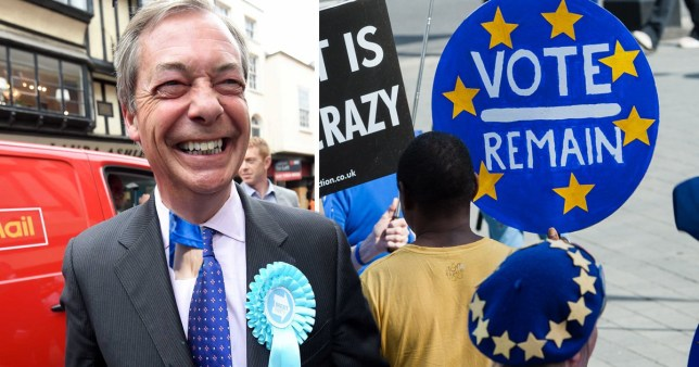 Nigel Farage, Brexit Party leader, next to picture of pro-remain protesters.