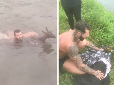 Video shows hero saving drowning deer from freezing canal in his underwear