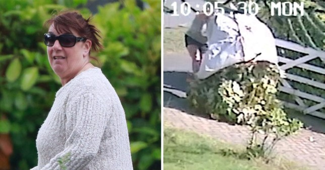 Julie Wayte, 61, from Newark, Nottinghamshire, next to a picture of her hedge clippings in the driveway of her neighbour Lara Acutt with whom she is in a four year feud over hedge cutting.