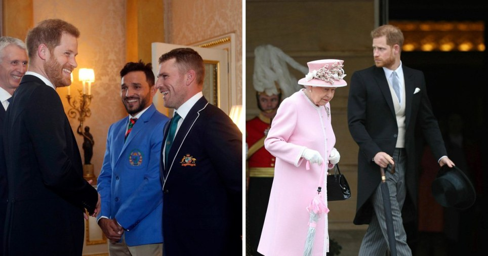 The Queen also met the group of world-class bowlers, batters and all-rounders who later joined a palace garden party ahead of the launch of the much-anticipated global cricket event being staged by England (Picture: PA)