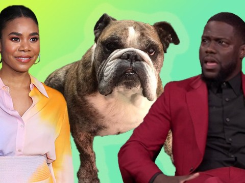 Kevin Hart is so savage as he calls dead dog 'unattractive'
