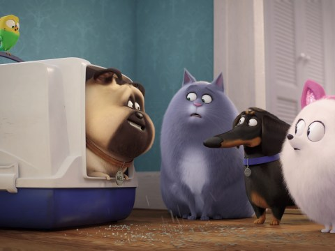 The Secret Life of Pets 2 cast, trailer and release date