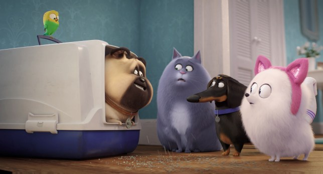 The Secret Life Of Pets 2 Cast Trailer And Release Date Metro News