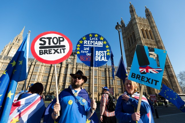 epa07396963 Anti Brexit protesters stage a protest outside the British Houses of Parliament in Westminster, central London, Britain, 25 February 2019. Britain's Prime Minister, Theresa May is having talks with European leaders at a summit in the Egyptian resort of Sharm el-Sheikh. EPA/VICKIE FLORES