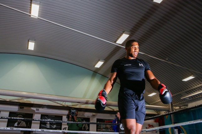 Anthony Joshua in action during the media session at the English institute of Sport, Sheffield. PRESS ASSOCIATION Photo. Picture date: Wednesday May 1, 2019. See PA story BOXING Joshua. Photo credit should read: Dave Thompson/PA Wire