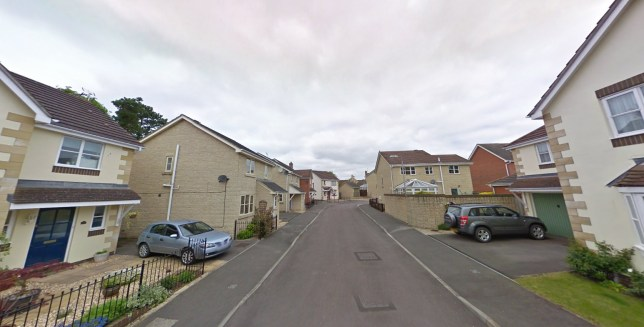 A murder investigation has been launched after a teenage girl, 17, was found at a house in Wiltshire