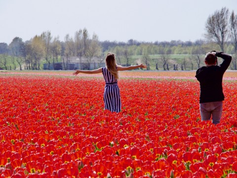 Netherlands tourist board wants to discourage people from visiting