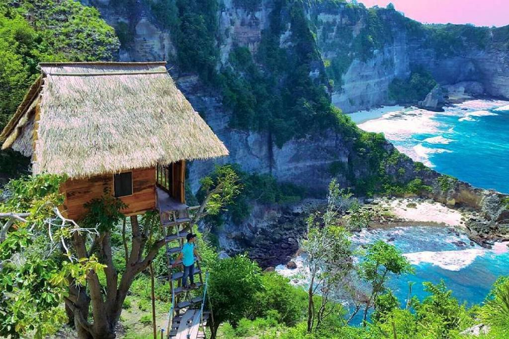 The tree house and amazing view