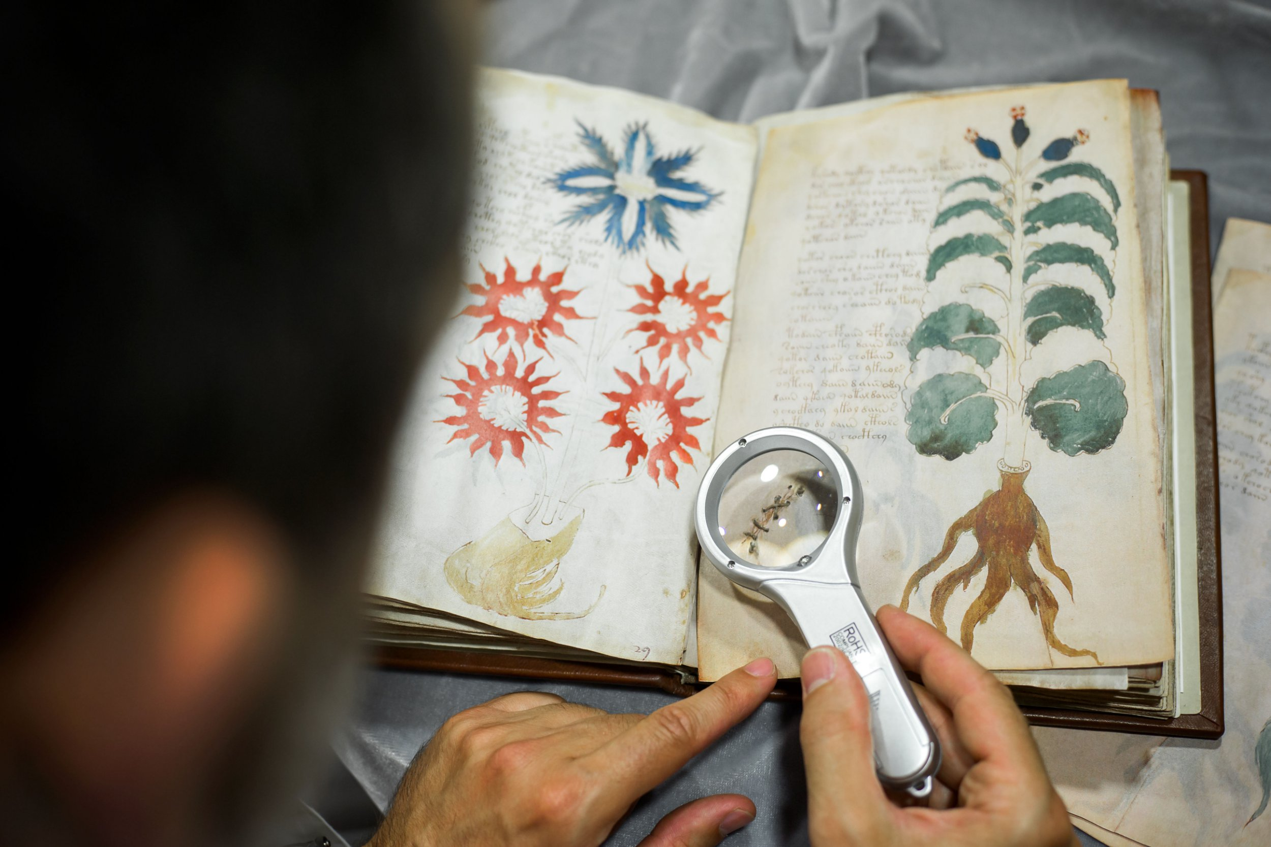 Quality control operator of the Spanish publishing outfit Siloe Luis Miguel works on cloning the illustrated codex hand-written manuscript Voynich in Burgos on August 9, 2016. The so-called Voynich Manuscript, a small unassuming book usually stored in a Yale University vault, is one of the most mysterious books in the world, that a small publishing house in northern Spain has finally secured the right to clone. The precious document containing elegant writing and strange drawings of unidentified plants and naked women is believed to have been written six centuries ago in an unknown or coded language that no one -- not even the best cryptographers -- has ever cracked. / AFP / CESAR MANSO / TO GO WITH AFP STORY BY MARIANNE BARRIAUX - (Photo credit should read CESAR MANSO/AFP/Getty Images)
