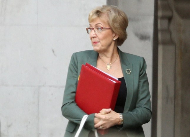 LONDON, ENGLAND - MAY 22: Leader of the House of Commons Andrea Leadsom is seen outside the House of Commons on May 22, 2019 in London, England. Theresa May is under increased pressure as she continues to try and get her Brexit withdrawal agreement through. (Photo by Dan Kitwood/Getty Images)