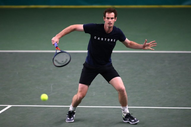 Andy Murray trains at Queen's