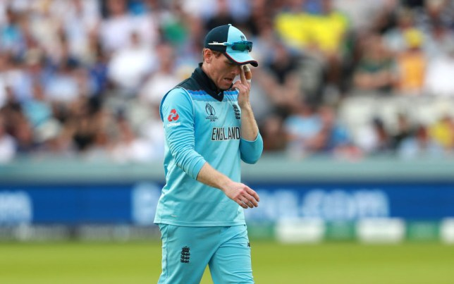 Kevin Pietersen slammed Eoin Morgan after England's defeat to Australia