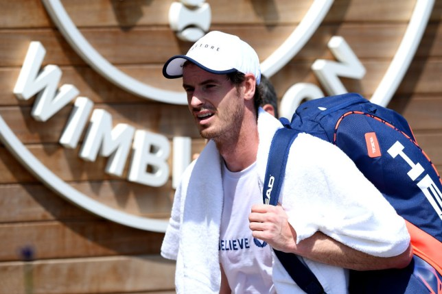 Andy Murray responds to Serena Williams' offer to be Wimbledon mixed doubles partner