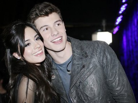 Fans are desperately trying to make Shawn Mendes and Camila Cabello a thing after she posts cryptic Insta about love