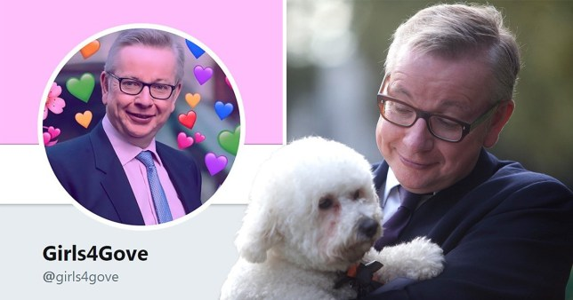 Michael Gove has a 'Girls 4 Gove' fandom and we hope it's a joke