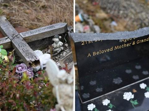 Vandals destroy gravestones after driving Audi through cemetery