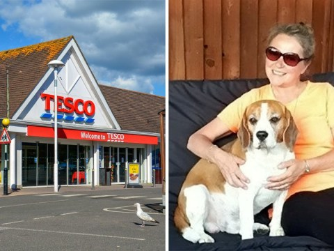 Shopper fuming as owner of dog left in hot BMW rants 'mind your own business'